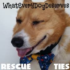 Rescue Dog Quotes Unique Inspirational Rescue Dog Quotes What Every Dog Deserves