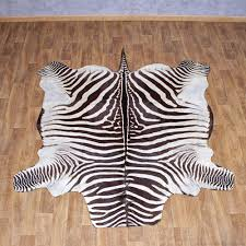 zebra rug taxidermy mount 10955 for the taxidermy