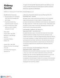 Resume Tips 2017 Technical Resume Therpgmovie 86