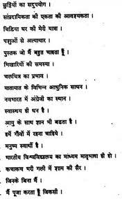 write my custom custom essay on donald trump adultery research mahatma gandhi essay in hindi academic essay hindi essay hindi nibandh poster