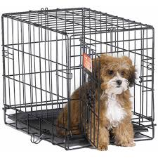 midwest  icrate dog crate  walmartcom