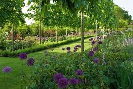 Small Picture Society of Garden Designers award winners announced Horticulture