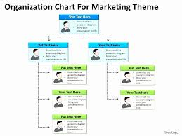 Org Chart Maker Google Lovely 33 Examples Organizational Chart Template Google
