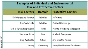 Risk And Protective Factors Chart Physicians And Lawyers For National Drug Policy