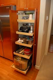 Modern Kitchen Pantry Cabinet Fabulous Pull Out Pantry Cabinets For Kitchen Greenvirals Style