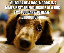 Quotes About Dogs And Friendship Best Quotes About Dogs And Friendship WeNeedFun