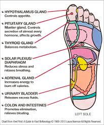 Reiki Foot Chart Diy Foot Reflexology 7 Pressure Points To Reduce Stress