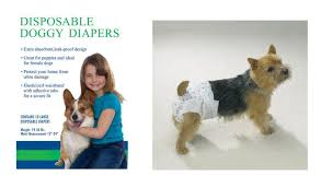 Disposable Doggy Diapers - Dog Diaper » My Poochie\u0027s Paradise Where YOUR Poochies dreams