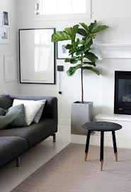 Indoor Interior On Great Modern Plant In Living Room 20 Garden Living Room Plant