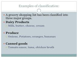 classification essay examples of classification