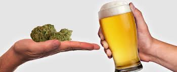 Image result for alcohol vs weed