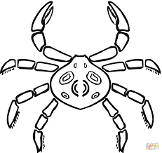 Small Picture Crab that looks like a spider coloring page Free Printable