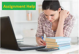 assignment help for students max online tuition assignment help for students