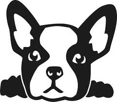 bulldog clipart black and white.  White French Bulldog Head Intended Bulldog Clipart Black And White O