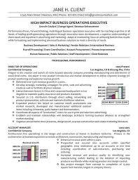 International Operations Executive Resume