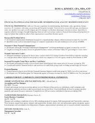 Example Of Business Resume Financial Plan Business Plan Elegant Free Business Resume Template 45