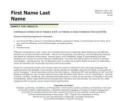 Executive Resume Unique Finance Executive Resume Stanmartin
