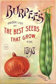 free vegetable seeds by mail best gardening catalogs best vintage garden images gardening vegetable catalogs by