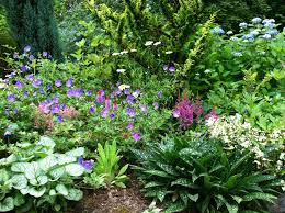 stunning design shade garden ideas small 15 interesting snapshot