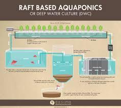 Floating Raft Aquaponics Design