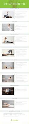 The Back Pain Exercise Guide