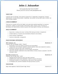 Resume Outlines Fascinating Resume Outlines Free Professional Resume Examples Free Resume