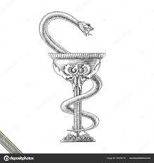 Kom Van Hygeia Hand Tekenen Vintage Stijl Apotheek Symbool Zwarte