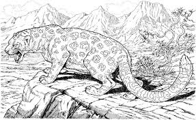 Wild Animal Coloring Pages Or Jaguar Coloring Pages Lovely Sports