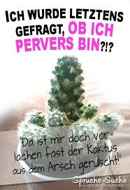 Kaktus Arsch Pervers Witzige Sprüche Sprüche Suche
