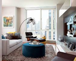 shaggy rugs for living room. shaggy carpet -120 and stylish ideas for living room furniture rugs