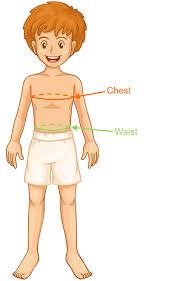 Youth Medium Pants Size Chart Boys Youth Clothing Size 8 16 Yrs