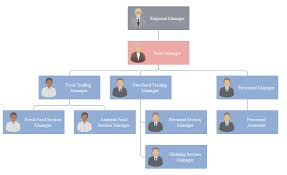 Corporate Management Structure Chart Tesco Company Organisational Structure Chart Tesco Company