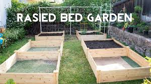 Kitchen Garden Planter Raised Bed Gardening How To Start A Raised Bed Vegetable Garden