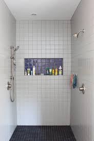 Modern Walk in Shower modern-bathroom