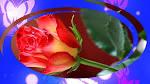 Прикольные стихи с днем рождения женщине красивые именные 66