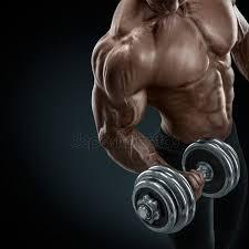 Bodybuilding Chart Free Download Of Bodybuilding Stock Pics Royalty Free Bodybuilding