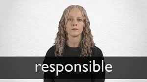 Responsible Definition And Meaning Collins English Dictionary