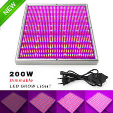 White Led Grow Light Us 44 64 39 Off Aliexpress Com Buy Dimmable 200w Led Grow Light 2835smd Red Blue White Led Grow Box For Indoor Garden Greenhouse Plants Seeds
