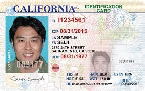 An Obtaining Official Help Government Id