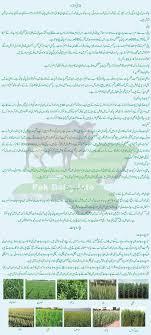 Calories Chart In Urdu Pdf Pak Dairy Info Urdu Nutrition And Feeding Of Dairy Animals