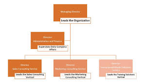 Pearson Organizational Chart The Company Schmidt And Pearson Consulting