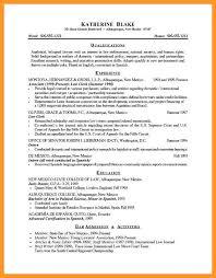12 13 Good Resume Opening Statement Loginnelkriver Com
