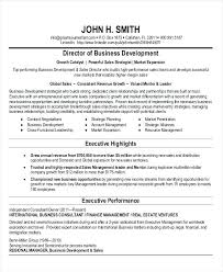 Business Development Resume Examples Business Development Director ...
