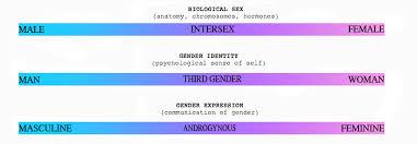 what gender spectrum true liberal nexus newspectrum