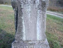 """Margaret Ann """"Polly"""" Hart Barclay (1837-1913) - Find A Grave Memorial"""