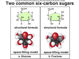 4 gb 03 chem j spr2003 lactose chemical formula