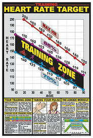 Aerobic Workout Heart Rate Chart Cardiovascular Fitness Target Heart Rate Health Club Gym