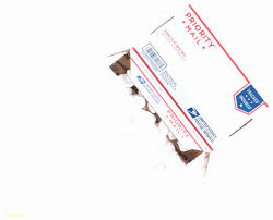 Avery 8875 Business Cards Templates Best Of Avery 5877