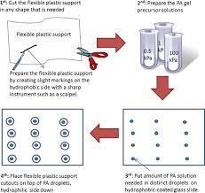 simple polyacrylamide based multiwell