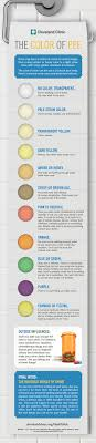 Kidney Failure Urine Color Chart What The Color Of Your Pee Says About You Health